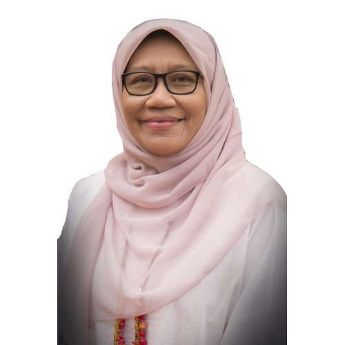 Dr Roziana Ariffin