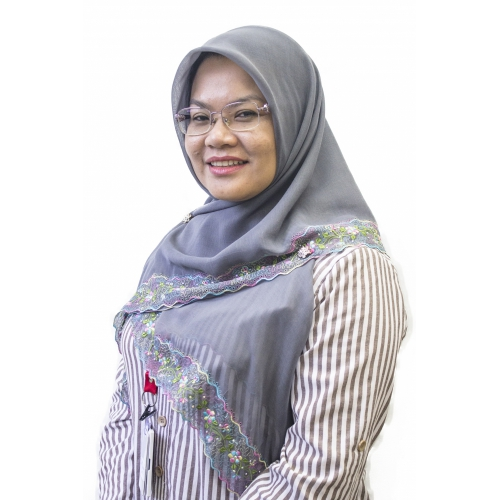 Dr Rohazly Ismail